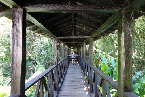 Bridge to botanical garden (Jerico, Colombia)