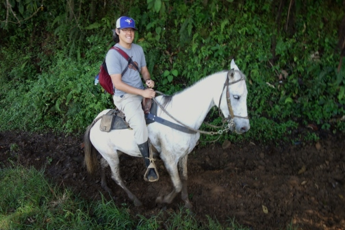 Jason's steed (Jardin, Colombia)