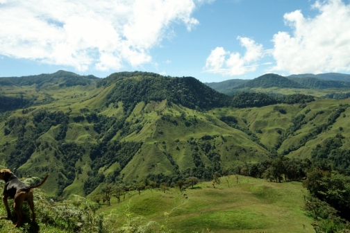 Andean scenery (Jardin, Colombia)