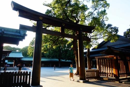 Meiji Shrine, Tokyo, Japan (Shibuya district)