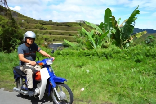 Motorcycling around the Cameron Highlands, Malaysia