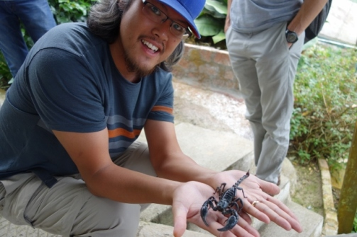 Handling scorpions (Cameron Highlands, Malaysia)